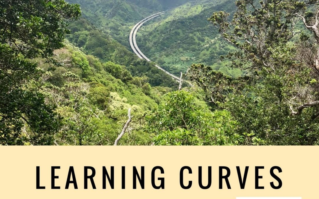 LEARNING CURVES.